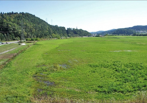 Rosental: Attraktives Industrie- und Gewerbegrundstück in Rosental