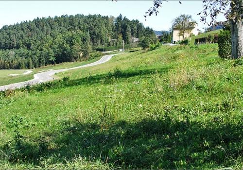 Rosental: Bauparzellen in leichter Hanglage